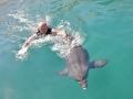 dsc_2864-moc-delfina