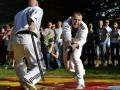 viacon-pokaz-taekwondo1