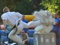 viacon-pokaz-taekwondo11