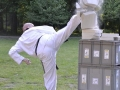 viacon-pokaz-taekwondo12