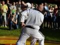 viacon-pokaz-taekwondo8