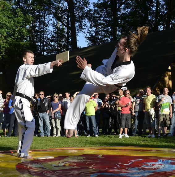 viacon-pokaz-taekwondo10