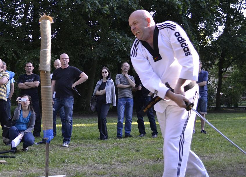 viacon-pokaz-taekwondo2