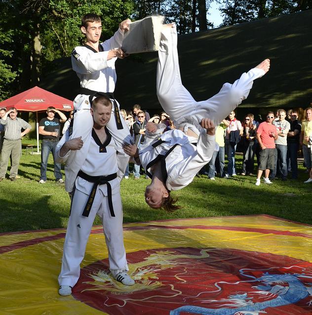 viacon-pokaz-taekwondo3