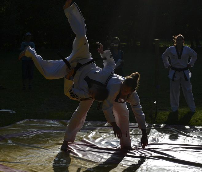 viacon-pokaz-taekwondo9